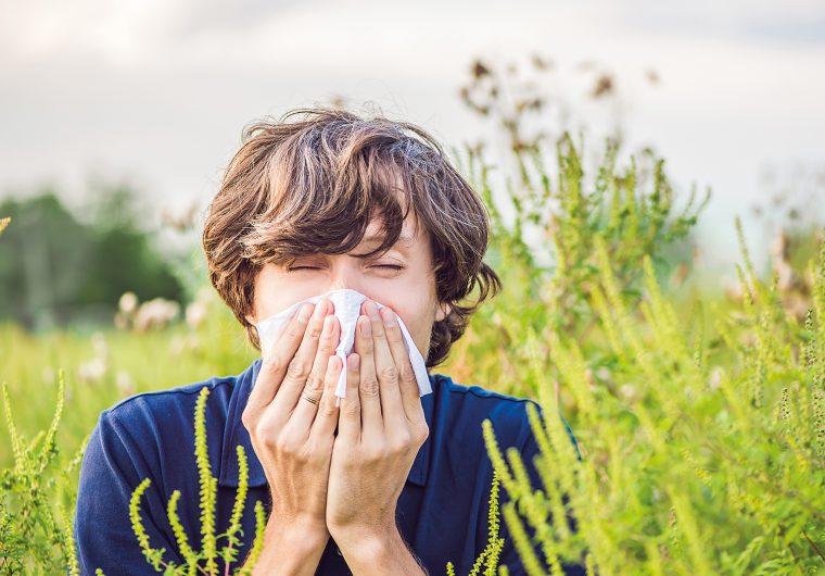 alergije