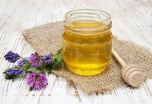 Ljekoviti med