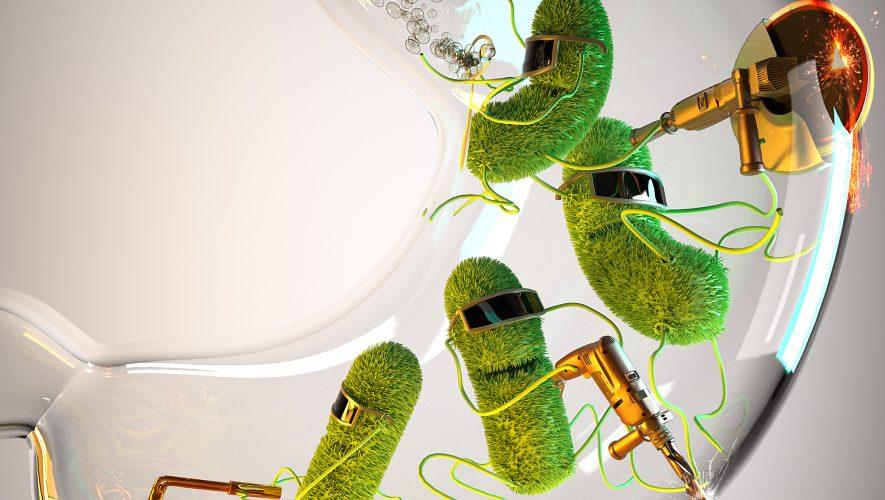Naša probava stalno je izložena napadima bakterija