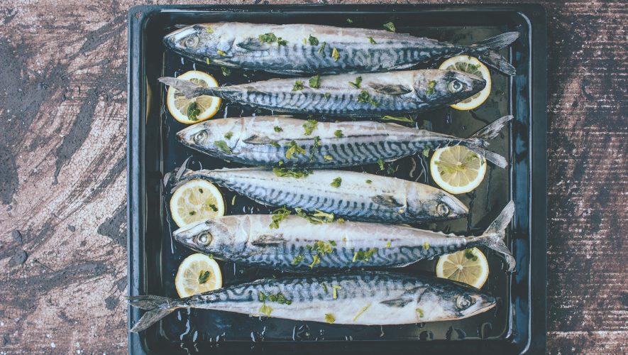Plava riba bogata je proteinima i omega-3 masnim kiselinama