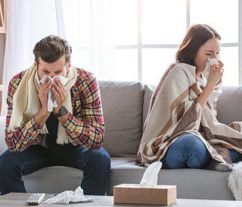 Prehlada ili gripa