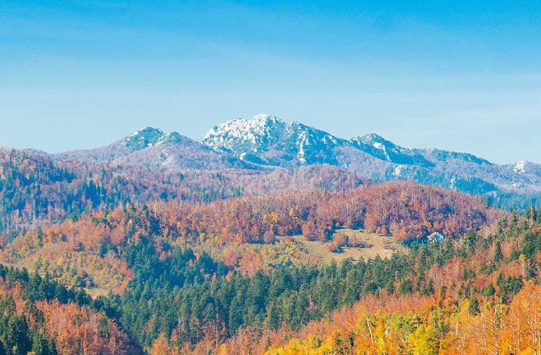 Planina Risnjak