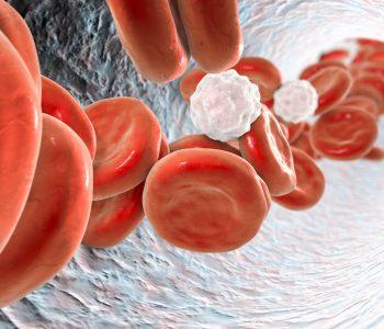 anemija ima više podjela