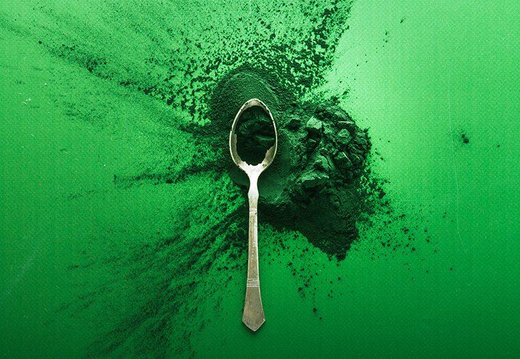 Spirulina i klorela alge