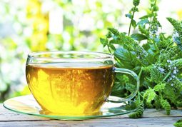 Kako pripremiti čaj za pomoć kod gastritisa