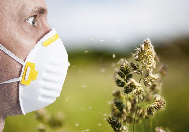 epidemija alergija