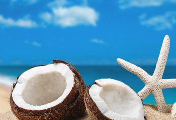 koža voli kokos