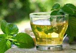 menta je odlična protiv gripe, grlobolje i gastritisa