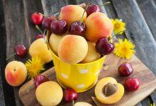 trešnje, marelice, voće