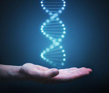 """Epigenetika Geni se """"ponašaju"""" u skladu s našim navikama i uvjerenjima"""
