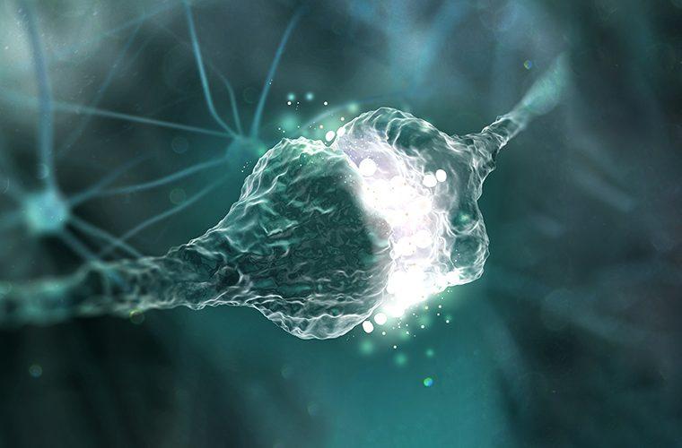 Epileptički napadaji bez epilepsije Simptomi i liječenje