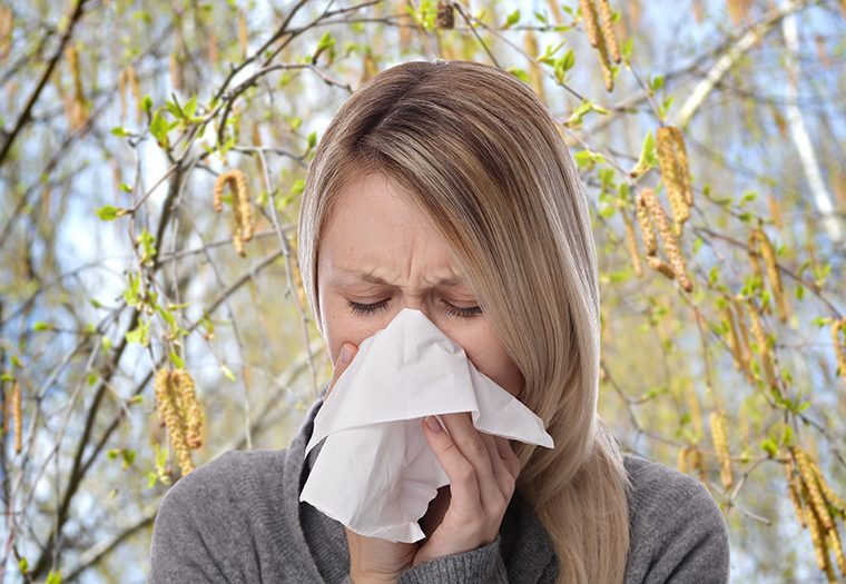 Proljeće u sjeni breze_Prepoznajte simptome jedne od čestih alergija