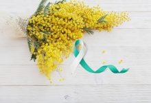 Hrvatski dan mimoza upozorava javnost na rak vrata maternice