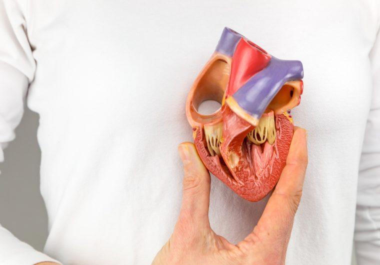 Operacija srca kbc zagreb