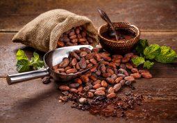 kakaovac kakao