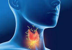 stitnjaca Svjetski dan stitnjace bolesti stitnjace