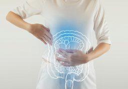 probiotici prebiotici postbiotici probava