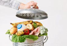 bacanje hrane hrana namirnice otpad smece