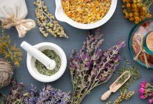 ljekovite biljke protiv virusa