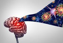 krpeljni meningoencefalitis