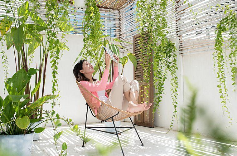 zeleni high tech vrtovi kućne biljke kucno zelenilo vrtne sobe
