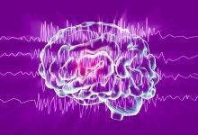 epilepsija nacionalni dan oboljelih od epilepsije