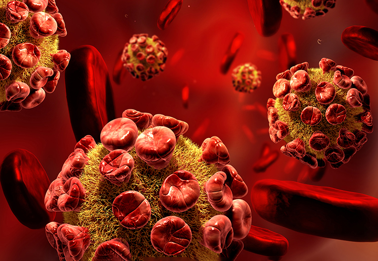 koronavirus istrazivaci Stanford tijelo napada samo sebe