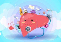 jetra zdravlje jetre simptomi teskoce bolesti