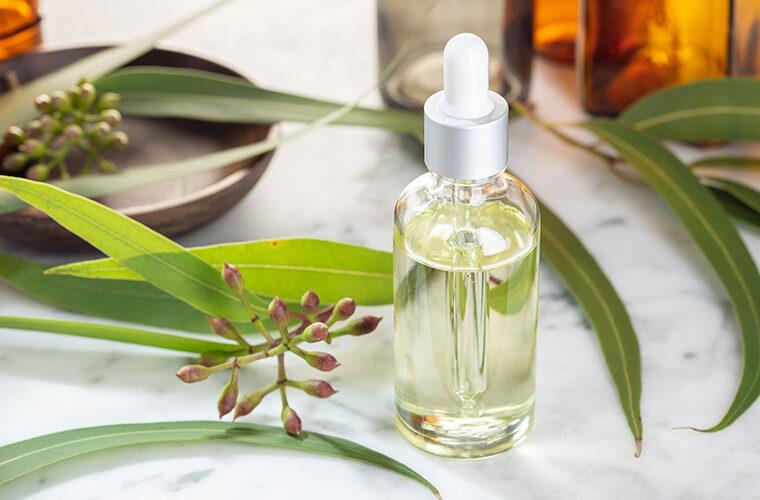 etericna ulja alergije ljekovito bilje pomoc ulje crnog kima eukaliptus