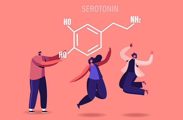 hormoni serotonin dopamin sreca mozak