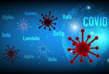 Coronavirus,Covid-19,Beta,,Delta,,Alpha,,Gamma,,Lampda,Variant,With,Blue