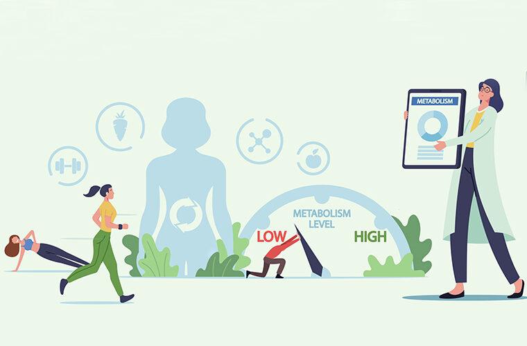 debljanje i metabolizam