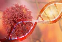 test Galleri rano otkrivanje 50 vrsta karcinoma