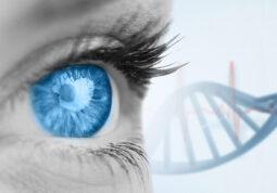 KB Sveti Duh genetsko lijecenje distrofije mreznice